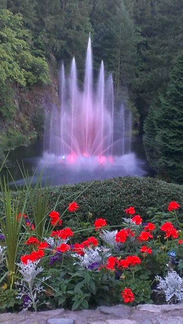 One Hour Luxury City Tour and Butchart Gardens 4