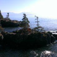 Scenic Coastal Personally Guided Hike