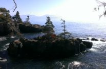 Scenic Coastal Guided Hike